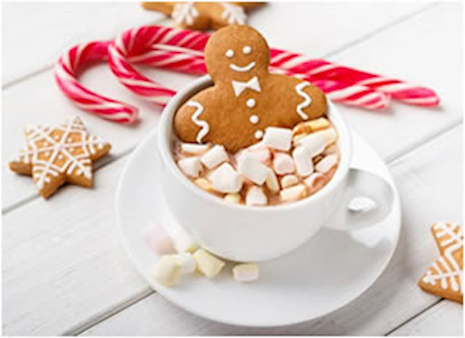 Happy Holidays Gingerbread Man (photo)