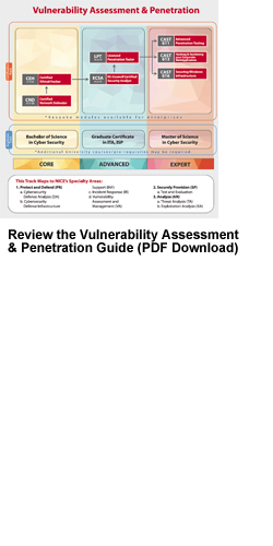 Vulnerability Assessment & Penetration document - PDF